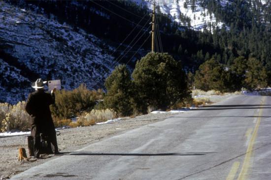 harry tonto roadside